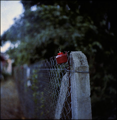The New Beginning (nizam6192004) Tags: red color 6x6 tlr film wall mediumformat square dof bokeh grain negative analogue framing negativescan swirly f35 kualaterengganu 75mm pelita ektar100 seagull4tlr hasrulnizam nizam6192004 mukmin007