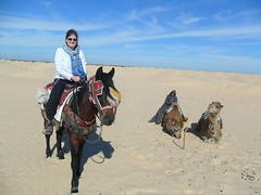 Douz Tunisia Jan 2013 067 (Matthew and Heather) Tags: horse sahara desert tunisia camels douz
