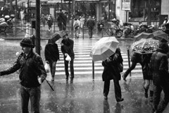it's raining again (Cedpics) Tags: street winter people paris france rain umbrella hiver pluie sidewalk rue trottoir parapluie rainshower parisbw fujixpro1