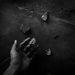 Yoppy Pieter: Metamorphosis