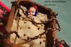 IMG_7773 (sara.abdulalrhman) Tags: الجميلة جمال تصوير اشياء عبدالرحمن قديمة ساره كانون الالوان المبدعه الدقه الزوم الاحترافيه