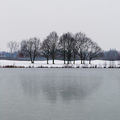 Winter Scenery (Gikon) Tags: trees winter snow ice landscapes frozen nikon frost day cloudy 1855mm winterscape winterscene winterscenery reflectingtrees gikon d3100 super~six pwwinter
