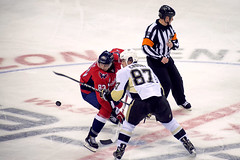 Beagle Wins Faceoff Against Crosby (clydeorama) Tags: usa ice beagle hockey nhl penguins washingtondc dc washington pittsburgh caps icehockey center puck faceoff verizon crosby capitals nationalhockeyleague verizoncenter