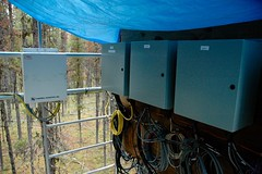 Data acquisition systems at tower base (ubcmicromet) Tags: mountainpinebeetle britishcolumbia wind turbulence temperature climate fluxnet kennedysiding tower mountainpinebettle dendroctonusponderosae ubc theuniversityofbritishcolumbia