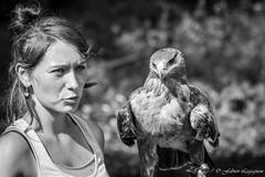 Parc Animalier du Hrisson (Fabien Legagneur) Tags: rapace aigle nb noiretblanc jura animal animaux canon eos500d herisson oiseau monochrome