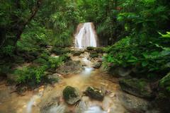 Extaciado... (Almodovar Photography) Tags: extaciado puertorico sansebastian cascada waterfall water rainforest bosquelluvioso