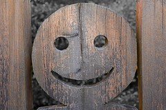 Happy weekend to all of you and keep on smiling! (Niwi1) Tags: wood face outdoor holz smiley gesicht lcheln freundlich niwi1 nikon smile friendly