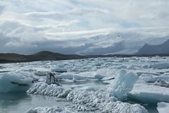 Jokulsrln_2191 (leoval283) Tags: ijsland iceland jokulsrln glacierlagoon ijs gletsjer