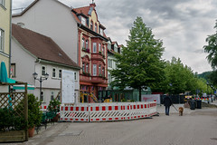 Tranquility in a small town I (Alexander Pugatschewski) Tags: ilmenau thuringia germany city street cityscape houses signs cyclist pedestrianpassage pavement province quiet tranquility travel urban dog