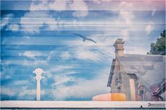 Nostalgie (PascaLucasJy) Tags: fentre windows objet oiseaux mouette nuages clouds ciel sky vacances holidays maison house breizh bretagne littoral rivage cte sentiments nikond7200