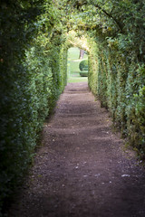 _DSC7576 (Robby68) Tags: vert marqueyssac jardin dordogne nature france soir suspendu