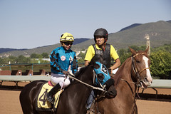 The favorite (DanJBailey) Tags: summer jockey racetrack horseracing newmexico nm ruidoso downs horse horses thoroughbred race racing canon 60d