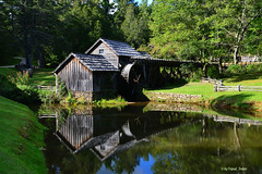 Oh know!!!! (tripod_treker) Tags: mabrymill mills blueridgeparkway scenicattractions pond water oldbuildings boards trees foilage green