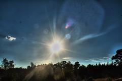 sun (f.tyrrell717) Tags: sun set tree line whit bogs