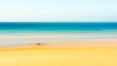 Dog at the Beach (Marcel Weichert) Tags: algarve alvor atlanticocean beach dog europe mar oceanoatlântico portugal sea summer wave faro pt