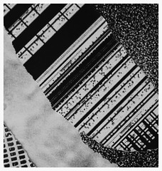 (Emma McNally1) Tags: celllular data information mitochondria exchange diatom categoryslippage acrossscales mattersofdegree fold grammar granular polyrhythm degree dataobject happens present systems