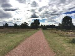 Sutton park way (iwanczuk_shots) Tags: birmingham suttonpark park sutton walk clouds sky tree trees view path