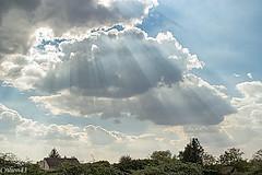 Soleil essaie de percer.... (Crilion43) Tags: arbres france véreaux divers ciel centre paysage canon nuages tamron 1200d cher objectif nature réflex sapin thuya