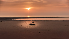 Sonnenuntergang (stefan103) Tags: sunset sonnenuntergang stpeterording glitzer stein gold himmel natur nordsee europa sanktpeterording deutschland schleswigholstein