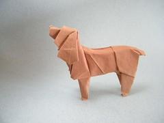 American Cocker Spaniel - Satoshi Kamiya (Rui.Roda) Tags: dog chien co origami perro american cachorro spaniel cocker papiroflexia satoshi kamiya