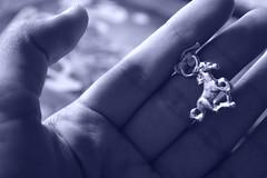 NECKLACE (Antonella Dominguez) Tags: horse caballo necklace friend collar amigas dias galloping galopando aprecio