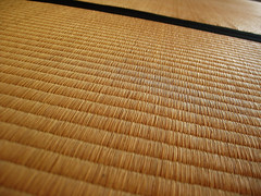(-Michik-) Tags: city house home japan temple japanese kyoto floor tofukuji tatami    tera       reiunin
