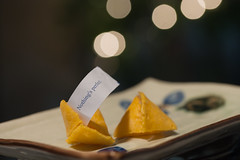 "3/52 ""Nothing's Perfect"" (Elizabeth_211) Tags: broken bokeh fortunecookie week3 2013 weekofjanuary15 52weeksthe2013edition 522013"
