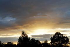 Coucher de soleil (Agns Laure) Tags: france nature gris horizon bleu ciel nuage nuit arbre blanc contrejour coucherdesoleil lapalisse rgionauvergne sonynexc3