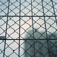 Shallow #2 (Joseph Tarigan) Tags: film fence mediumformat bokeh bronica sq canoscan f35 105mm zenza 160s zenzanon fujipro 9000f