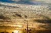 Sams - Crows-1 (Albacore08) Tags: sunset sky birds clouds atardecer flying poste nikon texas dusk flock lamppost pajaros cielo nubes mcallen parvada crows ocaso vuelo volando rgv cuervos goldenhours commercialphotographer hurracas momaconsulting