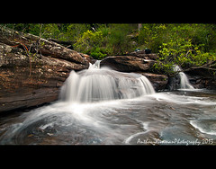 Waterfall Creek (AnthonyGinmanPhotography) Tags: flow waterfall theroyalnationalpark justasmallone nationalfalls
