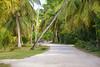 DSC_2752b La Digue, Seychelles: Island Living (wanderlust  traveler) Tags: ocean africa blue sea panorama nature landscape island rocks paradise palmtree tropical seychelles ladigue torquoise