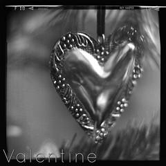 Valentine, Roy Harper (jofolo) Tags: heart valentine 163 royharper week163 repackagedbyzerofm