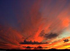 Feliz Martes de Nubes... de todo tipo (Ferny Carreras) Tags: uk inglaterra blue trees sunset england sky orange azul clouds downs bristol atardecer arboles unitedkingdom rosa cielo nubes naranja clifton crepsculo nwn thedowns pinka bestcapturesaoi