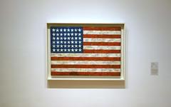 Jasper Johns, Flag