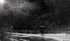 Sensational (Ebtesam Ahmed) Tags: road pakistan wild sun white snow black mountains west art nature wet rain silhouette night umbrella vintage season alone artistic feel scene east human flare rainfall moonsoon