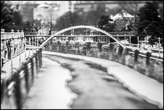 Stadtpark bridge (TheOtherPerspective78) Tags: vienna wien park bridge schnee winter white snow black ice lensbaby canon river canal focus bach slice kanal brcke fluss eis weiss schwarz stadtpark jugendstil wienfluss eisig eosm lensbabycomposer edge80 theotherperspective78