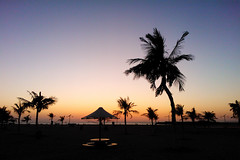 WP_002397 - Evening in Jumera Beach (crimsonbelt) Tags: sunset beach nature silhouette dubai jumera