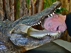 In the Jaws of Old Roy (ricko) Tags: me georgia stuffed teeth alligator okefenokeeswamppark oldroy