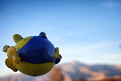 He Dreams Of Being A Macy's Thanksgiving Day Parade Balloon (hbmike2000) Tags: sky fish mountains fly nikon desert d200 poof flyingfish hss mrstix sliderssunday hbmike2000