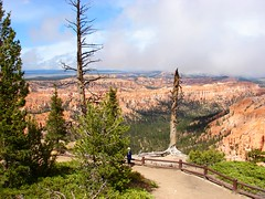 Bryce Canyon (Joy Ride !) Tags: ocean new york old uk blue sea brazil sky italy mountain lake fish snow canada praia beach nature water pool animal rock azul sisters square capri mar iceland spring amazing sand cabo europe italia hole tara crane grand lagoon jackson shipwreck cerro seven atacama naples carnaval banff bryce yellowstone cancun zion bahamas tetons gullfoss frio moraine reykjavick vulcano zakynthos montains gruta shoal caribe prismatic osorno arraial peyto noronha anacapri huapi navagio faithfull geizer zantes arraialcabo