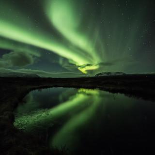 Norðurljós/Northern lights/Aurora borealis (CV0A0236)