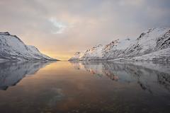 Ersfjordbotn (Thomas Koehler) Tags: sunset mountains norway landscape norge nikon day cloudy norwegen fjord troms troms tromsdalen nothernnorway ersfjordboten pwwinter