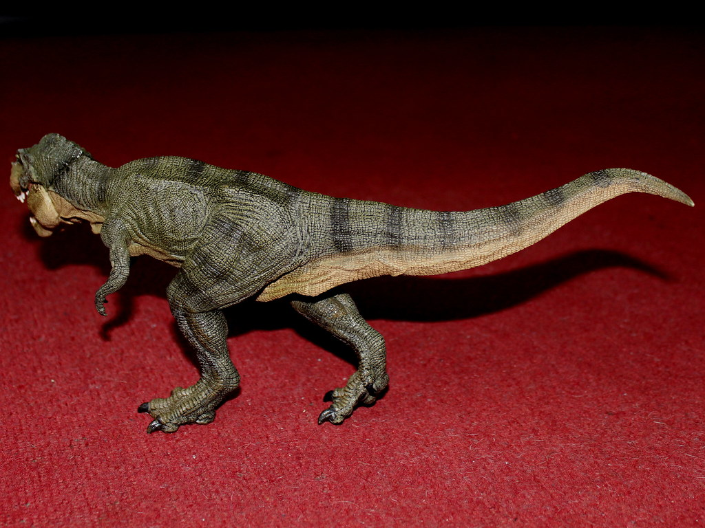 The world 39 s best photos of papo and tyrannosaurus flickr for Tyranosaurus rex