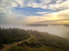Fog gets up to 850 feet (Night Owl City) Tags: california usa fog sunrise venturacounty thousandoaks conejovalley arroyoconejo lynnmeretrail