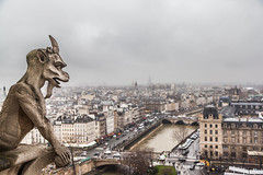 View of Paris in cloudy day from the top of Notre Dame Cathedral (Kanonsky) Tags: old city travel roof urban sculpture paris france tower tourism church monument monster statue stone closeup skyline architecture clouds vintage dark french photography high scary europe cityscape looking view cathedral cloudy balcony famous gothic watching culture dramatic landmark medieval gargoyle demon devil notre dame chimera citiscape mythological