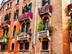 Venice Window boxes 8th Oct 2012 (saxonfenken) Tags: flowers venice windows italy building pastel bricks balconies thumbsup 708 flowerbox gamewinner thechallengefactory yourockwinner pregamewinner 708city