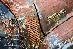 Ford Abandoned (Julie Thurston) Tags: old winter ford abandoned car woods rust colorful paint rusty maryland gritty oldcar rustycar bluecar bluerust fordf100
