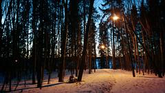 Valaistu polku (Antti Tassberg) Tags: sunset lake snow ice mobile forest espoo suomi finland evening nokia spring twilight track path cellphone lit lumi mets ilta jrvi j auringonlasku uusimaa 808 kevt polku evenfall pitkjrvi laaksolahti phoneography valaistu pureview