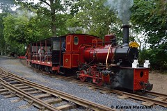 LM44 departs Stradbally, 30/7/16 (hurricanemk1c) Tags: railways railway train trains ireland industrialrailway narrowgauge stradbally stradballywoodlandsrailway 2016 lm44 bórdnamóna irishturfboard steamloco andrewbarclay clonsatworks